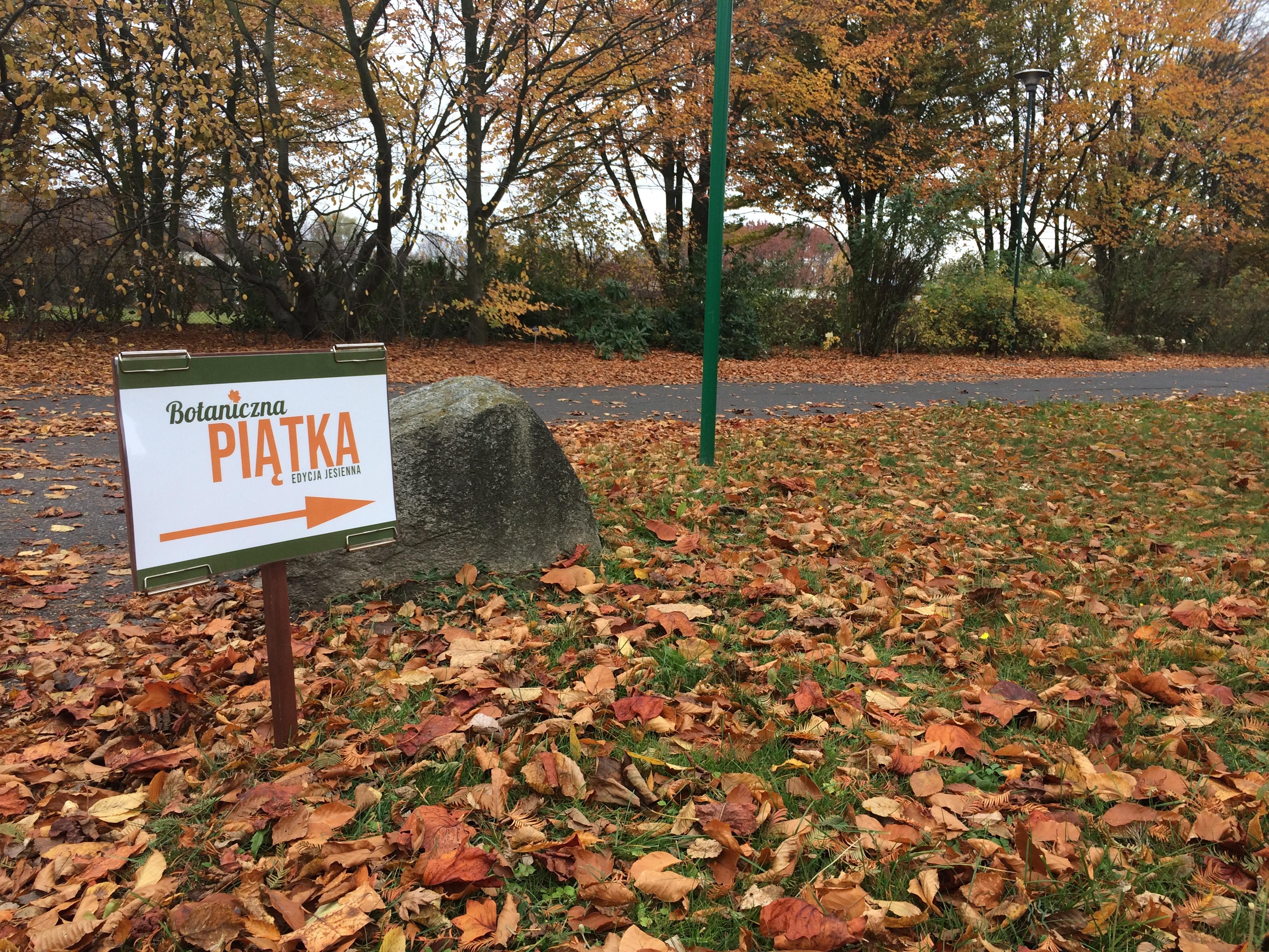 Botaniczna Piątka Warszawa - edycja październikowa